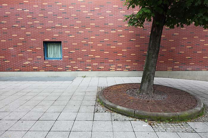 IMG_6372_Joachim_Hildebrand